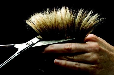 Anoush Hair Cuts, Karori