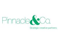 Pinnacle&Co. Ltd