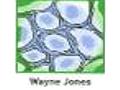 Jones Wayne O Mr