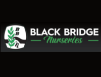 Black Bridge Big Tree Nurseries