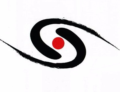 Aikido Shinryukan Linwood