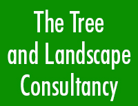 [The Tree And Landscape Consultancy]