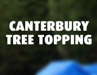 Canterbury Tree Topping