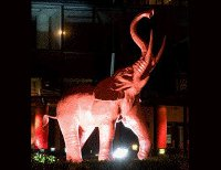Red Elephant Thai Cuisine