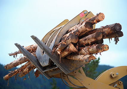 Logging Safety