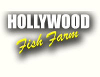 Hollywood Fish Farm