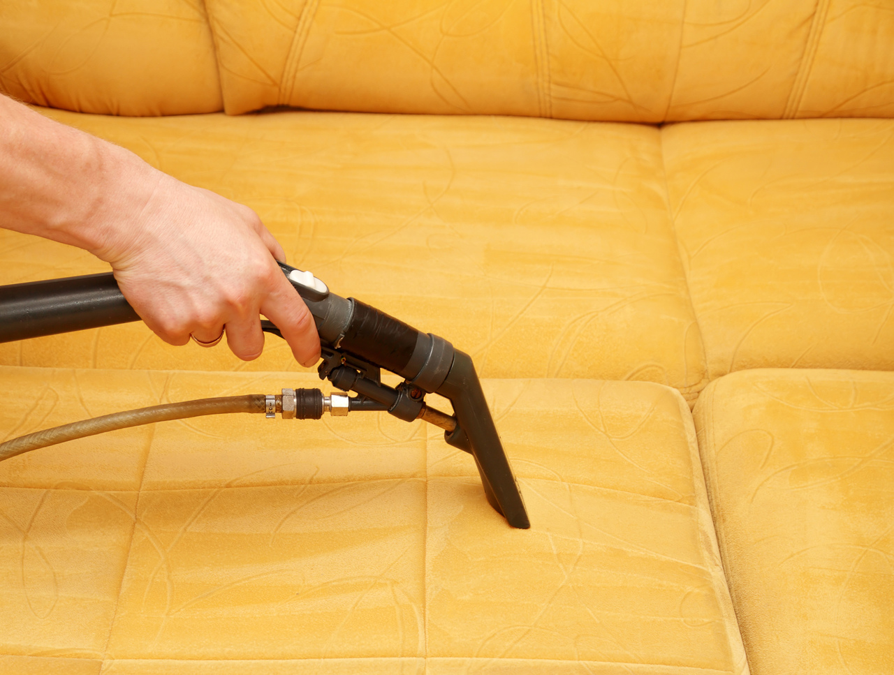 FCS Cleaning Services covers upholstery cleaning and soil protection in Auckland