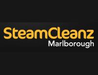 Steamcleanz