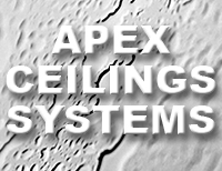 Apex Ceilings Systems