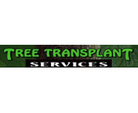 Tree Transplant Services and Specimen Trees