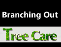 Branching Out TreeCare Ltd