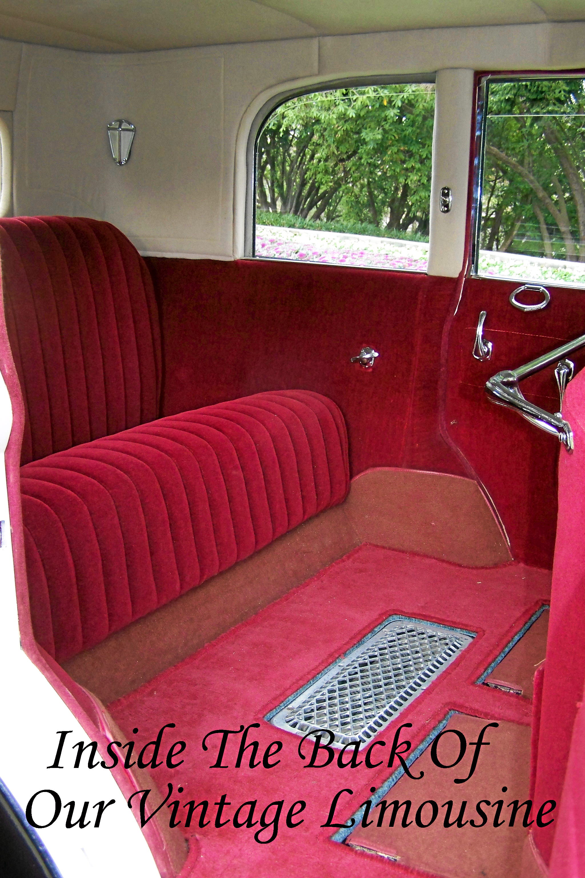 Back of the Limousine