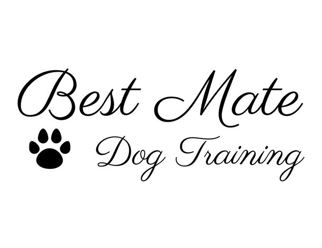 Best Mate Dog Training