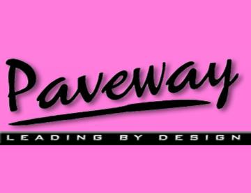 Paveway 1994