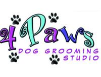 [4 Paws Dog Grooming Studio]