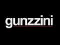 Gunzzini