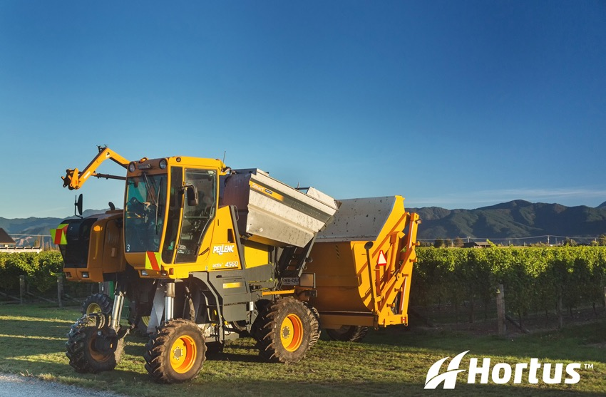 Machine harvest for another of our client's vineyards