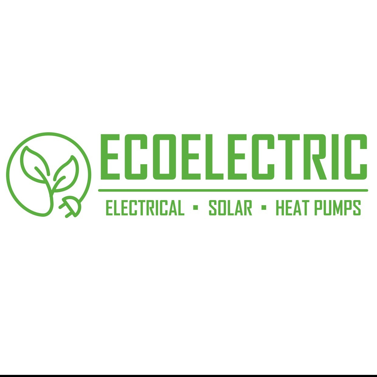 ECOELECTRIC 2016 LIMITED