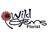 Wild Stems Florist