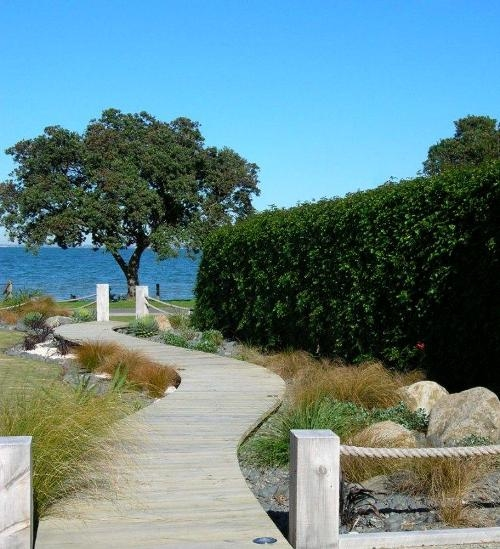 Coastal garden - planting