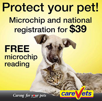 Micro-chipping Services
