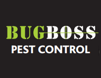 Bug Boss