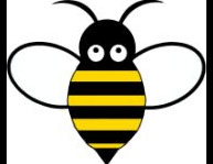Busy Bee's Chimney Cleaning
