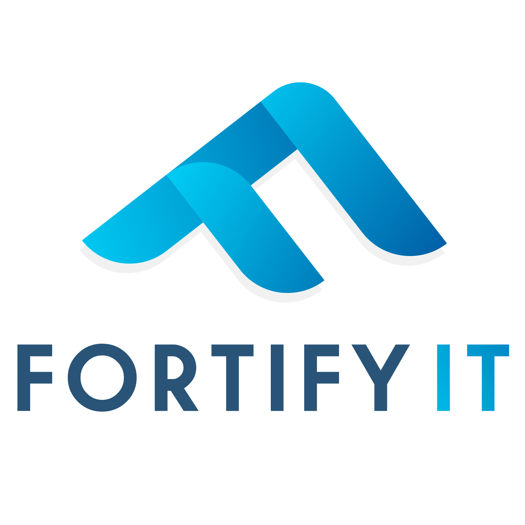FORTIFYIT LIMITED