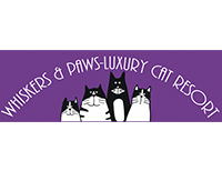 Whiskers & Paws Luxury Cat Resort