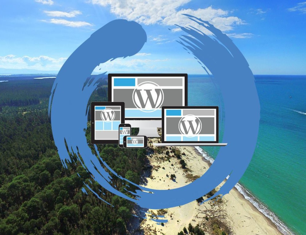 Syndeo - Web Design and Digital Marketing Tauranga