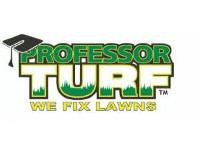 Professor Turf