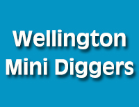 Wellington Mini Diggers