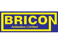Bricon Services Ltd