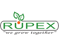 Rupex Vegetable Seeds & Plug Plants