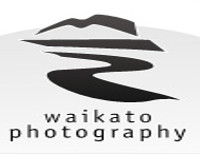 Waikato Photography