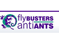 Flybusters / AntiAnts