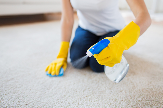 Stubborn stains are a thing of the past with FCS Cleaning Services in Auckland