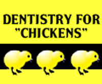 Dentistry for Chickens
