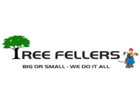 Tree Fellers 2017 Limited