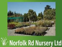 Norfolk Road Nursery Ltd