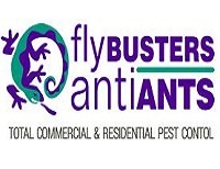 Flybusters/Antiants