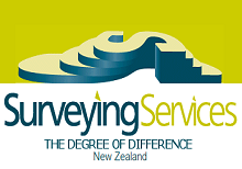 Surveying Services Ltd