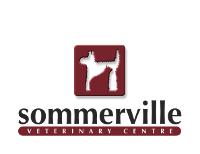 Sommerville Vet Centre - The Loft Cattery