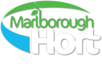Marlborough Hort