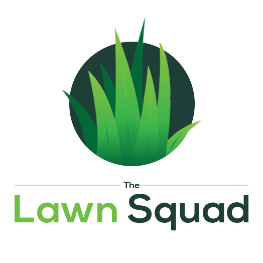 The Lawn Squad