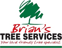 Brians Tree Services