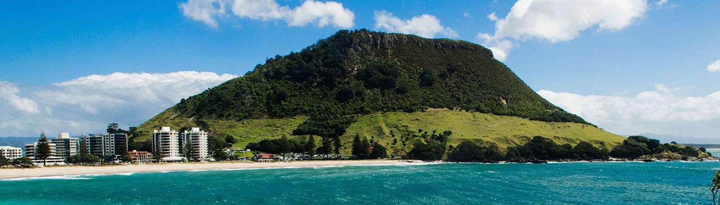 BDO Tauranga Ltd Tauranga Area | Yellow® NZ