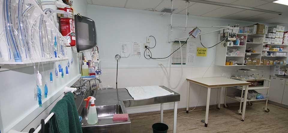 Pet Surgery Room