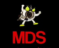 MDS Diesel Specialists (2013) Ltd
