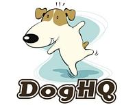 DogHQ Dog Day Care